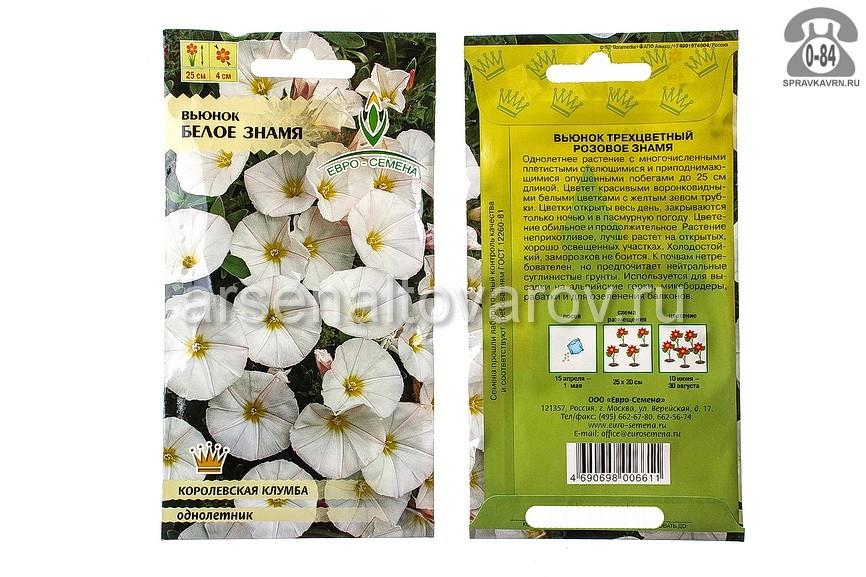 Семена цветов Евро-семена вьюнок Белое знамя однолетник 0,5 г Россия