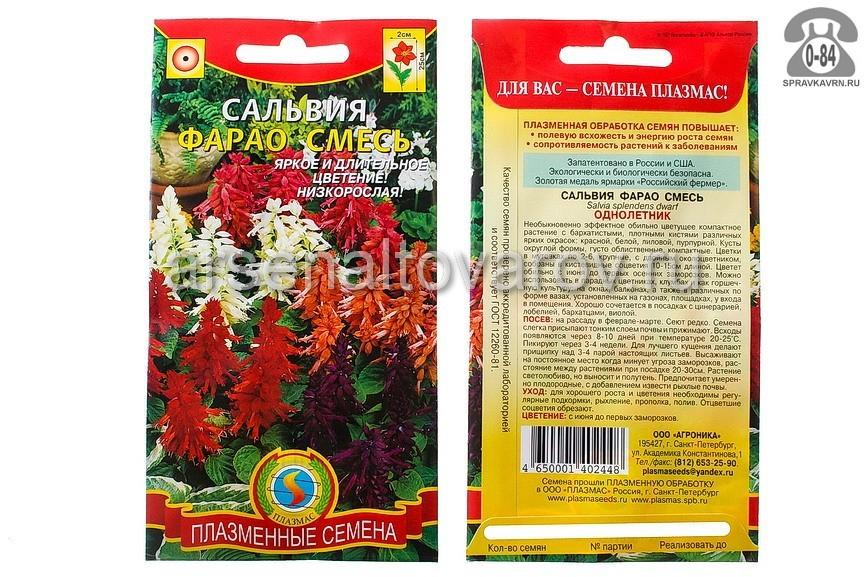 Семена цветов Плазменные семена сальвия Фарао смесь однолетник 0,04 г Россия