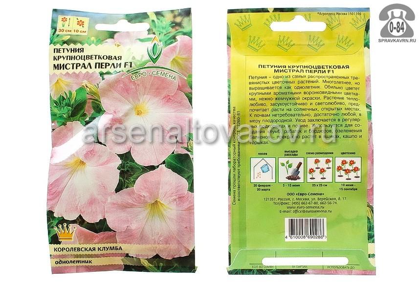 Семена цветов Евро-семена петуния Мистрал Перли F1 крупноцветковая однолетник 10 шт Россия