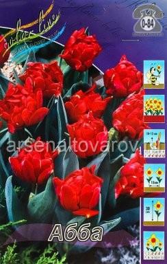 Посадочный материал цветов тюльпан Абба многолетник махровая луковица 10 шт. Нидерланды (Голландия)