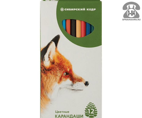 Цветные карандаши Лисёнок цветов 12 картонная коробка