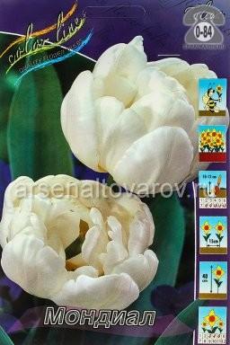Посадочный материал цветов тюльпан Мондиал многолетник махровая луковица 10 шт. Нидерланды (Голландия)