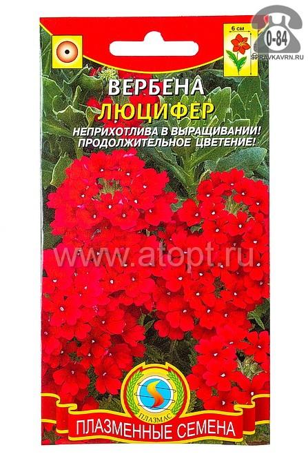 Семена цветов Плазменные семена вербена Люцифер ярко-алая однолетник 0,05 г Россия