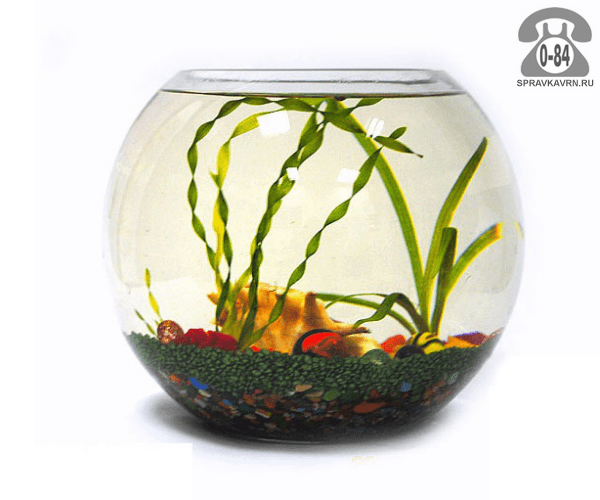 Аквариум круглый (шар) 10 л стекло Россия