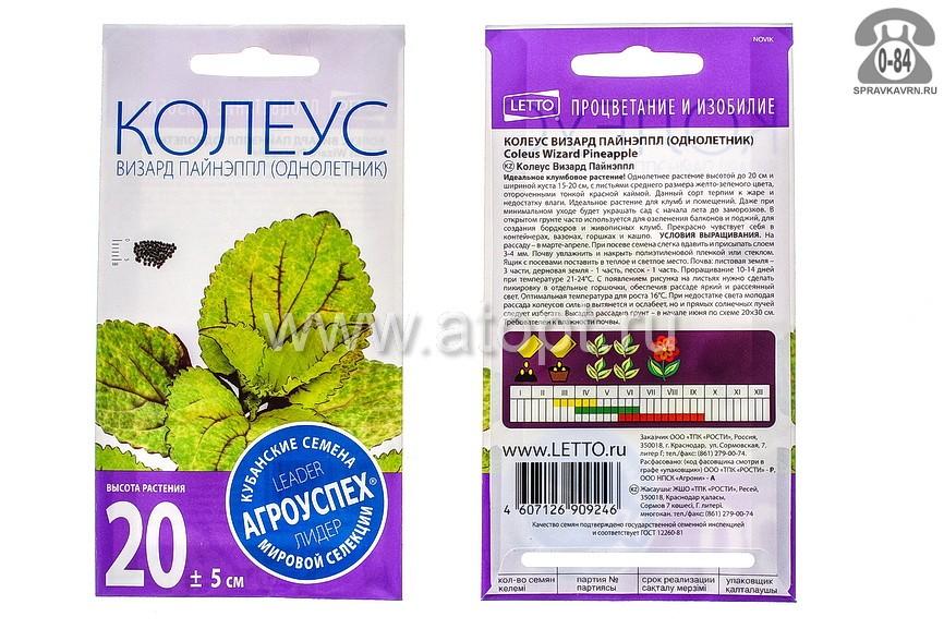 Семена цветов Агроуспех кубанские семена колеус Визард Пайнэппл однолетник 10 шт Россия