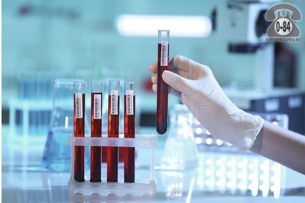 Анализ крови альбумин для детей без выезда