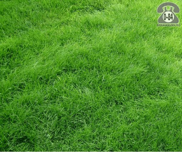 Удобрение минеральное для газона (газонное)