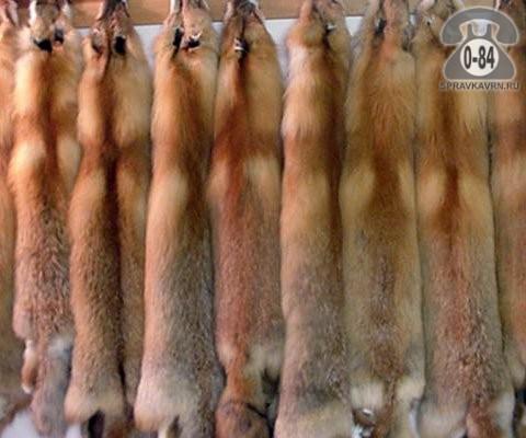Мех натуральный лиса