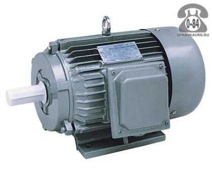Двигатель электрический 1-фазный