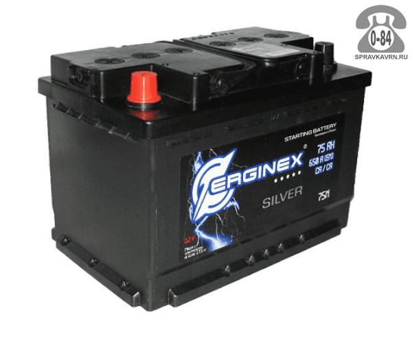 Аккумулятор для транспортного средства Эрджинекс (Erginex) 6СТ-75 полярность прямая, 278*175*190мм