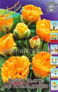 тюльпан махровый поздний Даббл Бьюти оф Апельдорн (в пакете 10 шт) цена за пакет луковичные (Голландия)