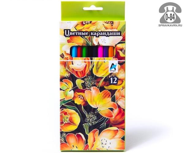 Цветные карандаши Цветы цветов 12 картонная коробка