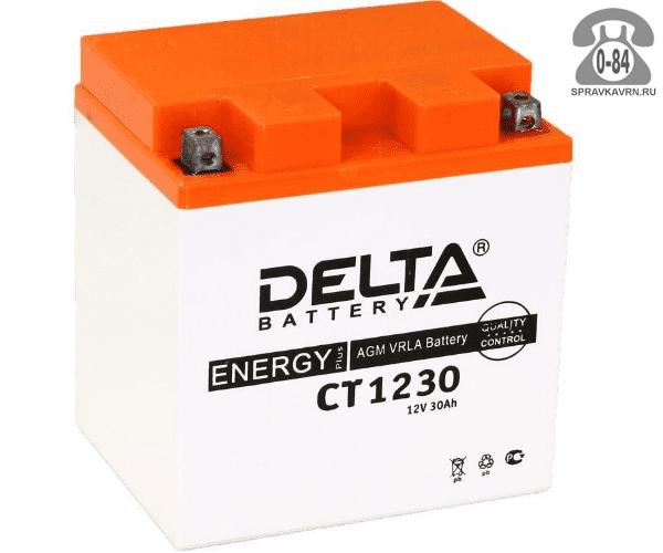 Аккумулятор для транспортного средства Дельта (Delta) CT 1230 AGM обратная полярность 168*126*175 мм