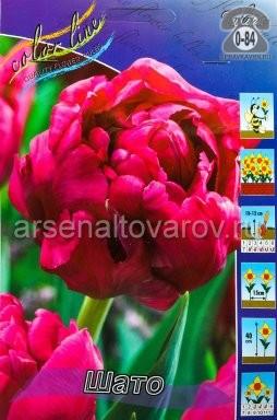 Посадочный материал цветов тюльпан Шато многолетник махровая луковица 10 шт. Нидерланды (Голландия)