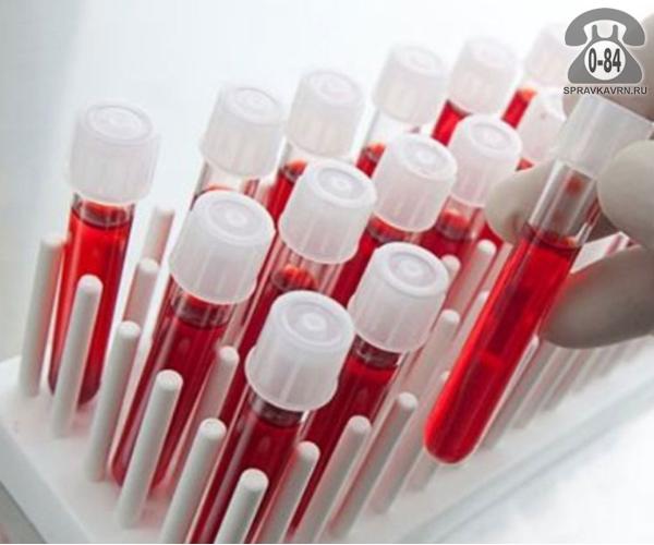 Анализ крови биохимическая оценка функции почек для взрослых без выезда