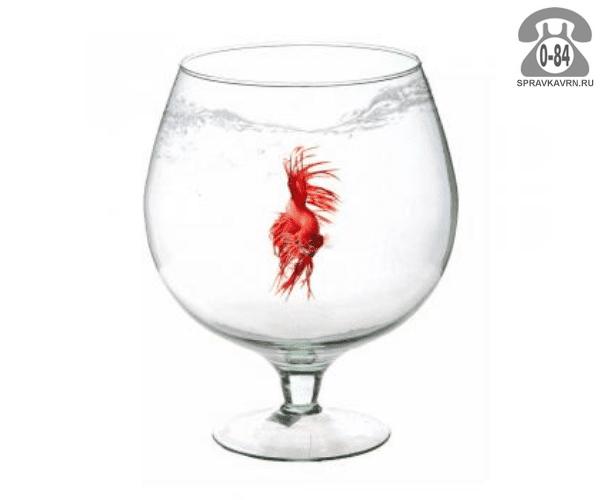 Аквариум рюмка (бокал) 1 л 12 см 12 см 17 см стекло Россия