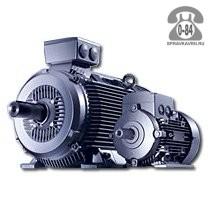 Двигатель электрический 200 кВт