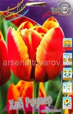 Посадочный материал цветов тюльпан Хай Роулер многолетник махровая луковица 10 шт. Нидерланды (Голландия)