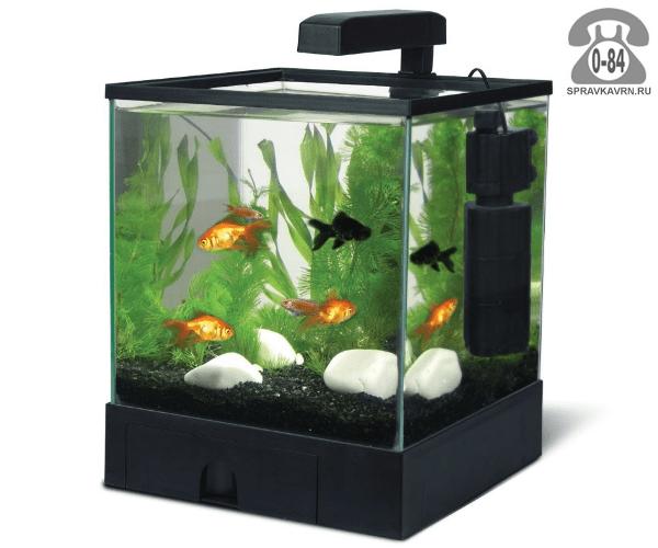 Купить аквариум в спб