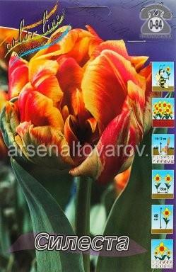 Посадочный материал цветов тюльпан Силеста многолетник махровая луковица 10 шт. Нидерланды (Голландия)