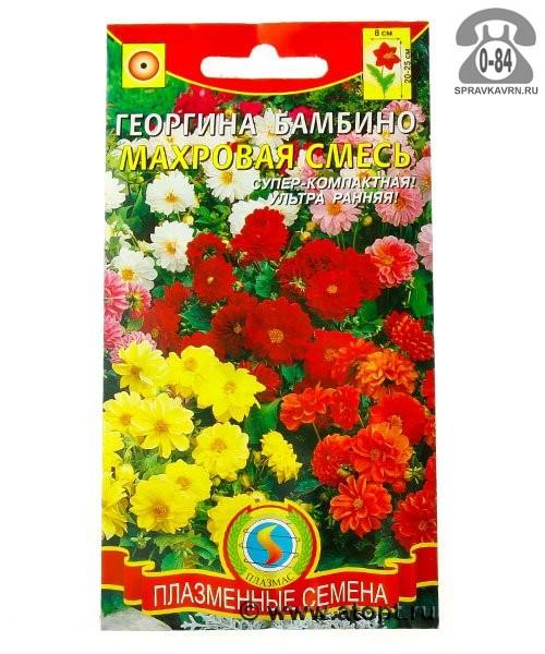 Семена цветов Агроуспех кубанские семена георгина Фигаро Ред Шейдес однолетник 7 шт Россия