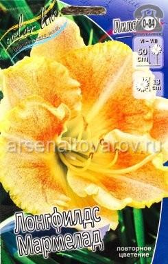Посадочный материал цветов лилейник Лонгфилдс Мармелад многолетник корневище 2 шт. Нидерланды (Голландия)