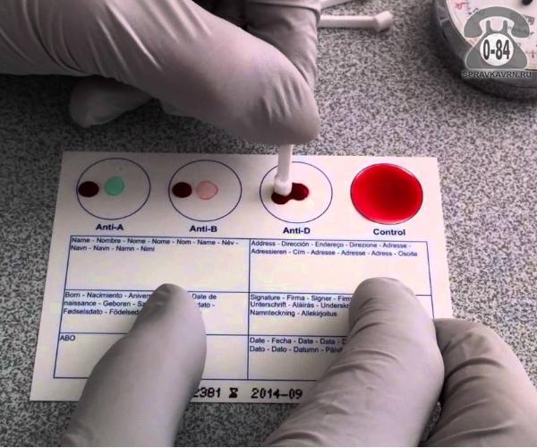 Анализ крови группа крови + резус фактор для детей без выезда