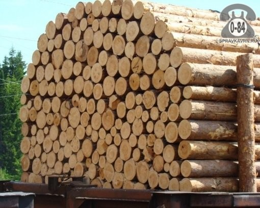 Доска необрезная Аско-лес сосна 35 мм сырая (естественной влажности)