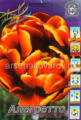 Посадочный материал цветов тюльпан Аллегретто многолетник махровая луковица 10 шт. Нидерланды (Голландия)
