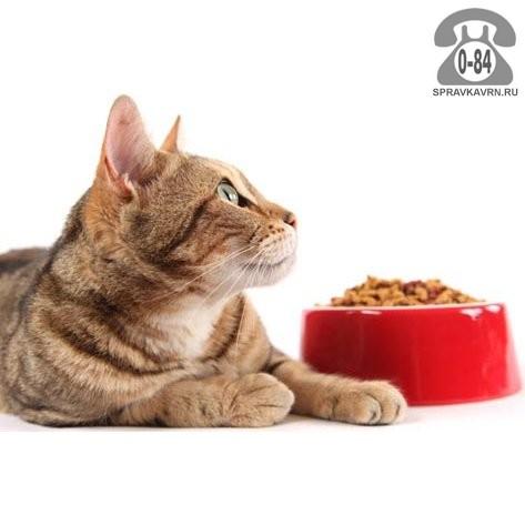 Корм для животных лечебный кошки