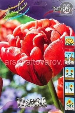 луковичные тюльпан махровый ранний Шамад (в пакете 10 шт) цена за пакет (Голландия)