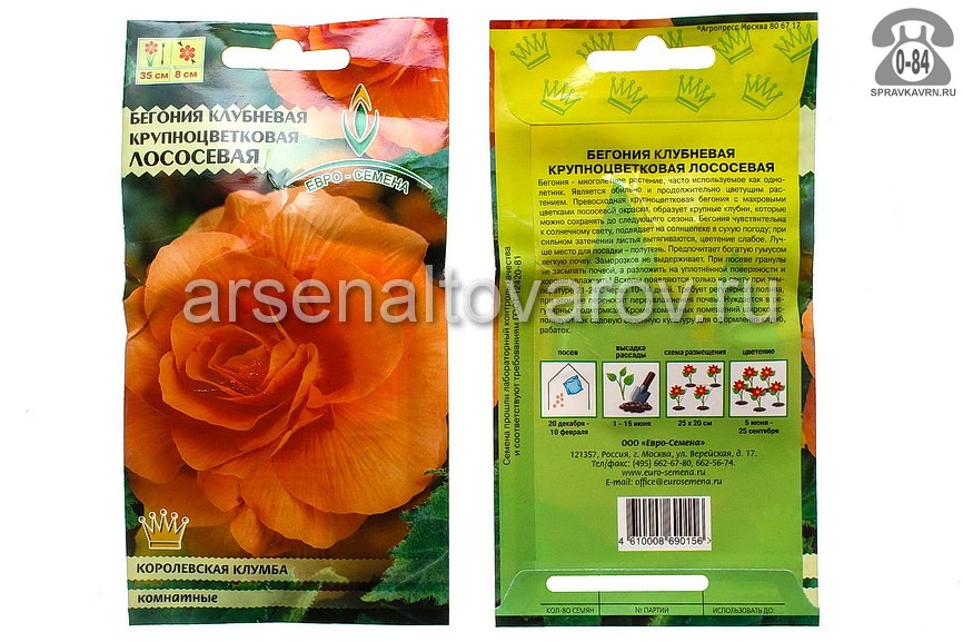 Семена цветов Евро-семена бегония Лососевая крупноцветковая однолетник 10 шт Россия