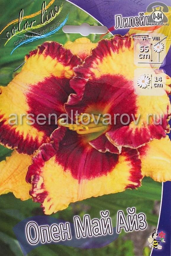 Посадочный материал цветов лилейник Опен Май Айз многолетник гофрированная корневище 1 шт. Нидерланды (Голландия)