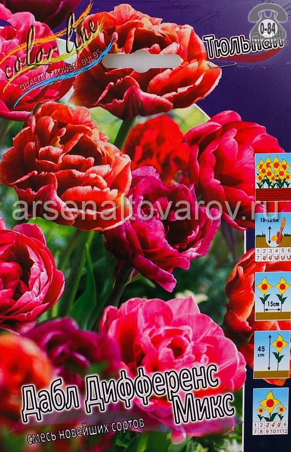 Посадочный материал цветов тюльпан Даззлинг Дабл Микс многолетник махровая луковица 10 шт. Нидерланды (Голландия)