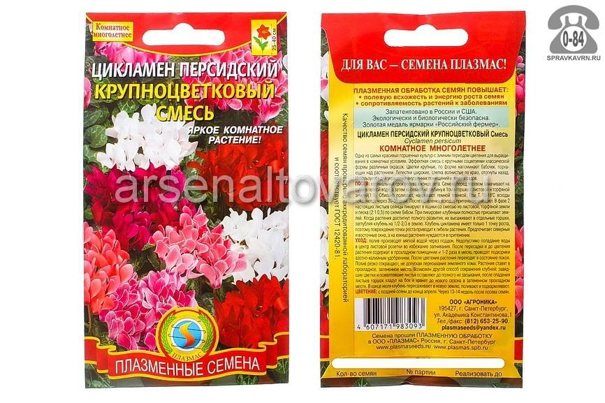 Семена цветов Плазменные семена цикламен персидский Крупноцветковый смесь многолетник 3 шт Россия