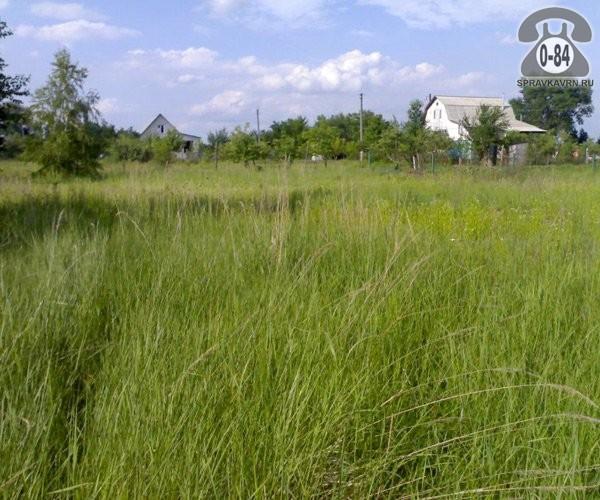 стоимость аренды земли в иркутском районе заинтересовалось