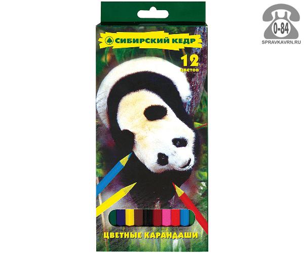 Цветные карандаши Панда цветов 12 картонная коробка